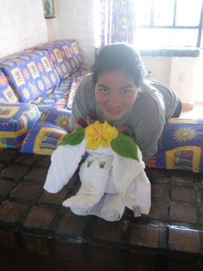 IMG_3714_Cynthia_and_TowelElephant